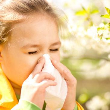 Аллергия у ребенка на пыльцу растений при цветении: причины, симптомы, диагностика и лечение