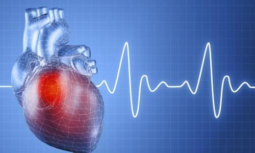 Брадикардия сердца: что это такое, какие причины и симптомы заболевания у детей, как лечить?
